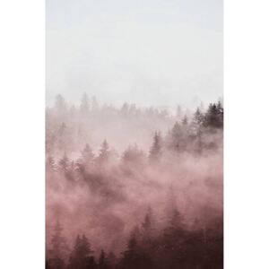 Poster Foggy red