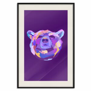 Posters: Colourful Bear [Poster]